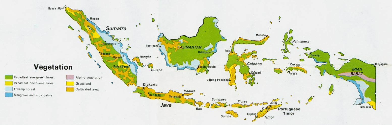 Download free indonesia maps indonesia vegetation gumiabroncs Choice Image