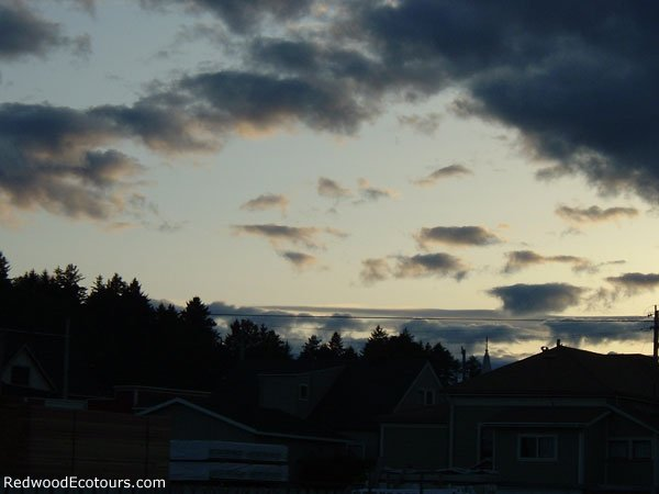 Ferndale-sunset1